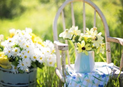 planter i hage