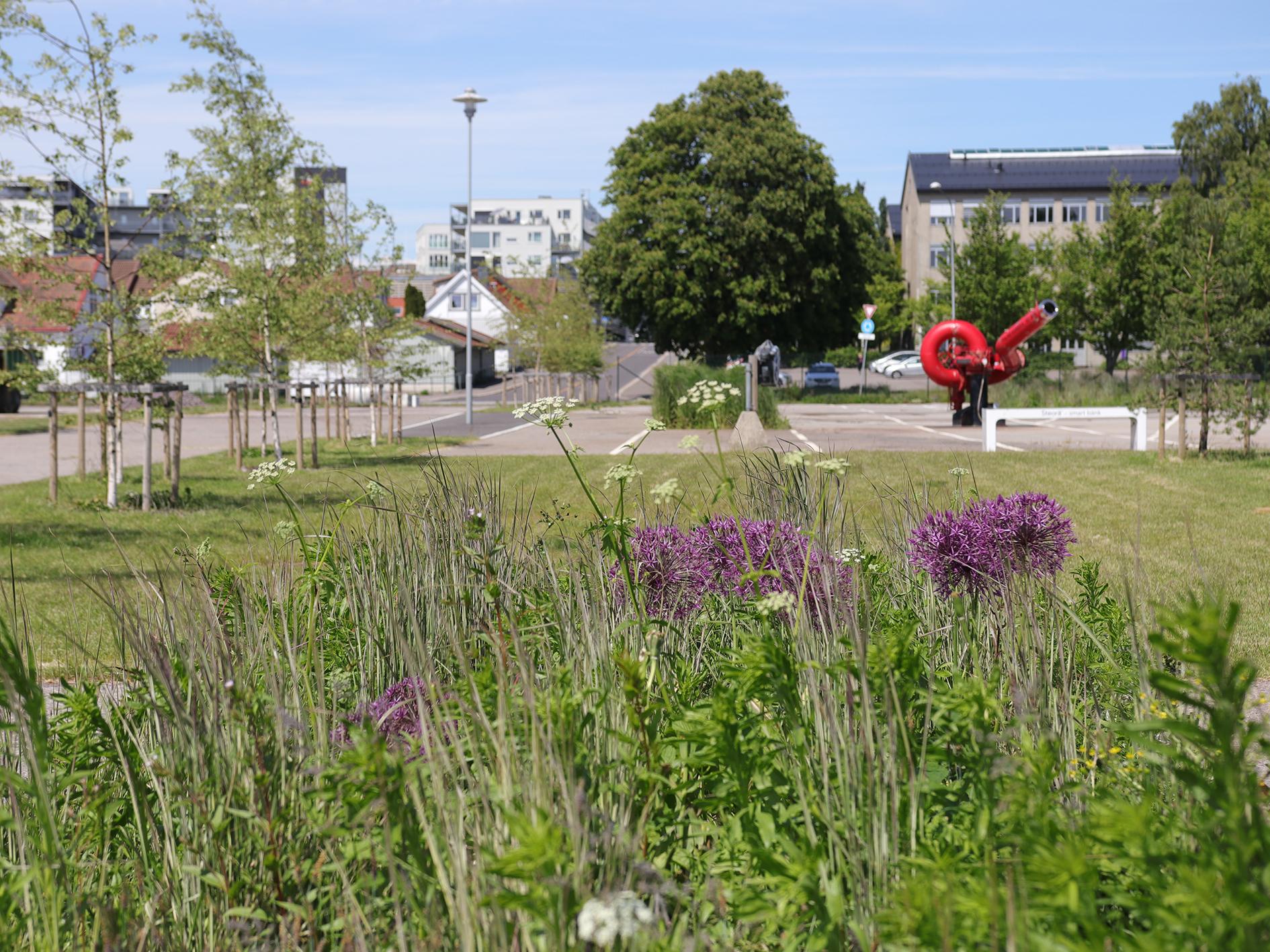 Horten havn_grøteig_6